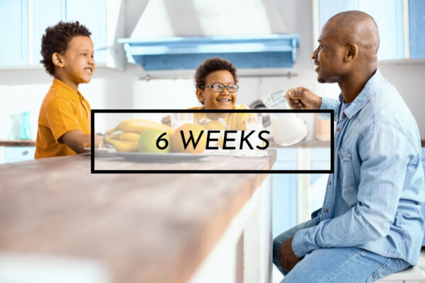 family meal plans 6 weeks